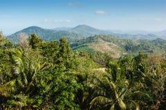 Visión panorámica desde la colina Buda grande en Phuket imagen de archivo