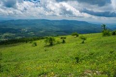 Visión panorámica desde la montaña de Whitetop, Grayson County, Virginia, los E.E.U.U. Fotografía de archivo libre de regalías
