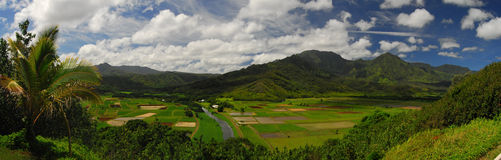 Visión panorámica en Hawaii Fotos de archivo libres de regalías