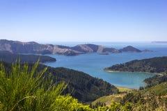 Visión para virar sotobosque y la bahía de Hakahaka hacia el lado de babor cerca de Picton, Nueva Zelanda fotografía de archivo libre de regalías
