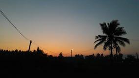 Visión por la mañana Imagen de archivo