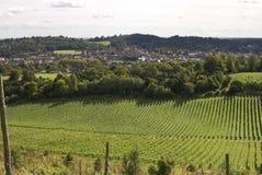 Visión sobre Dorking. Surrey. Inglaterra Fotografía de archivo libre de regalías