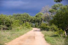 Visión sobre el parque nacional de Kruger Imagen de archivo libre de regalías