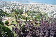 Visión sobre la ciudad de puerto de Haifa Imagen de archivo libre de regalías