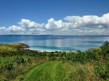 Visión sobre la vegetación del arbusto sobre el mar Fotos de archivo libres de regalías