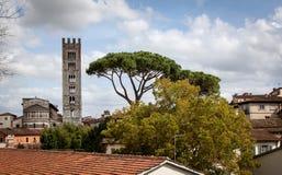 Visión sobre Lucca y el Duomo San Martín en Toscana, Italia Fotos de archivo libres de regalías