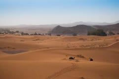 Visión sobre Sahara Desert con los camellos que esperan a turistas Foto de archivo libre de regalías