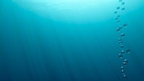 Visión subacuática Fotografía de archivo libre de regalías
