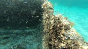 Visión submarina en la costa de Cerdeña con ruinas antiguas en la cámara lenta almacen de metraje de vídeo