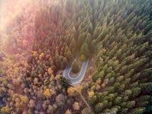 Visión superior aérea de arriba sobre curva del camino de la vuelta de la horquilla en el forestFall anaranjado, árbol verde, ama Imagenes de archivo