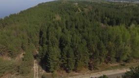 Visión superior desde el dron del bosque verde y del lago azul Naturaleza asombrosa almacen de metraje de vídeo
