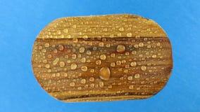 Visión superior, rotación de un viejo tablero oval de madera en gotas de agua Aislado almacen de metraje de vídeo