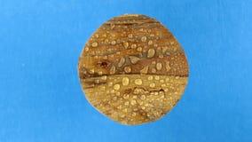Visión superior, rotación de un viejo tablero redondo de madera en gotas de agua Aislado almacen de metraje de vídeo