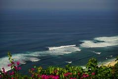 Visión superior sobre las flores rosadas en el mar Fotografía de archivo