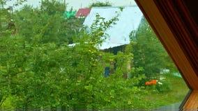 Visión superior a través de la ventana al jardín viejo bajo la lluvia almacen de video