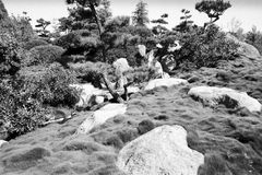 Visión surrealista en el jardín 2 del estilo japonés Fotografía de archivo