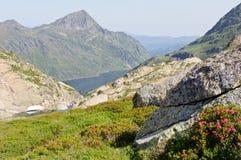 Visión típica en las montañas de Pyrenees, Ariege, Francia Imagenes de archivo