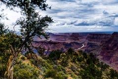 Visión a través de Grand Canyon Rim Arizona del sur Fotos de archivo
