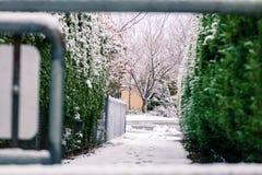 Visión a través de la puerta al camino nevoso Fotografía de archivo libre de regalías