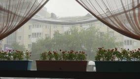 Visión a través de la ventana del café en la lluvia del verano en la calle de la ciudad Situación del pote de flores en travesaño metrajes