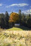 Visión a través de un valle alpino con los árboles del otoño Foto de archivo libre de regalías
