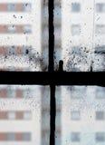 Visión a través de ventanas de marco viejas Foto de archivo