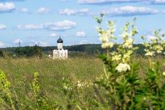 Visión a través del prado de Bogolubovo hacia la iglesia de la intercesión de la Virgen Santa en el río de Nerl Foto de archivo libre de regalías