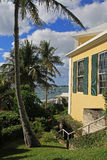 Visión tropical, palmera y barcos Fotos de archivo libres de regalías
