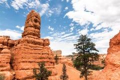 Visiónes desde el barranco rojo de la roca, Nevada Imágenes de archivo libres de regalías
