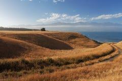Visiónes desde la calzada de la península de Kaikoura, Nueva Zelanda Imagen de archivo libre de regalías