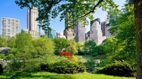 Visi?n desde el Central Park, Manhattan, NYC imagen de archivo libre de regalías