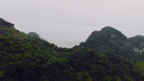 Visi?n desde el pico en Cat Ba National Park Ha larga, Vietnam, bah?a de Halong Selva densa Matorrales en monta?as metrajes