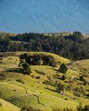 Visi?n desde Mt Tamalpais hacia el oc?ano fotos de archivo libres de regalías