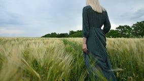 Visi?n trasera Una muchacha rubia joven en un vestido verde flojo camina sin prisa a lo largo de un campo del trigo verde r almacen de video