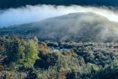 Visibilité directe Alerces, Patagonia, Argentine de parc national Photographie stock libre de droits