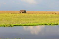Visibilité directe Llanos, Venezuela Images stock