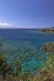 Visible coralino a través de las aguas transparentes Imagen de archivo libre de regalías