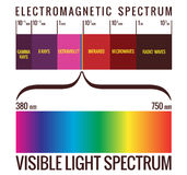 Visible Light Spectrum Diagram. Range of visible light within the electromagnetic spectrum Royalty Free Stock Photo