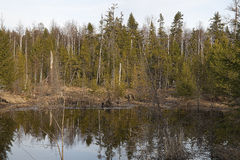 Visimsky State Nature Biosphere Reserve stock images