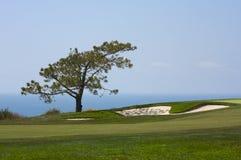 Visión desde el campo de golf de los pinos de Torrey Fotografía de archivo