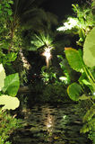 Visión tropical verde Imagenes de archivo