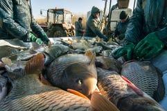 Visindustrie Stock Foto
