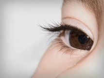 Vision Stock Images