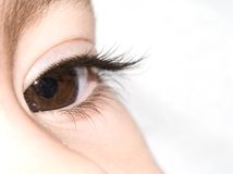 Vision. A macro of a pretty brown eye Royalty Free Stock Photography