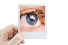 Vision Royalty Free Stock Photo