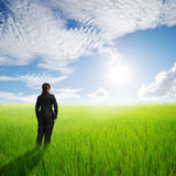 Vision business woman in green rice fields an sun sky Stock Photo