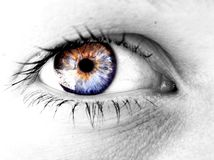 Vision eye Stock Images