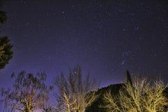 Vision nocturne photos libres de droits