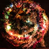 Another detail of the Christmas tree seen from the top royalty free stock images