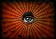 Visione Immagine Stock